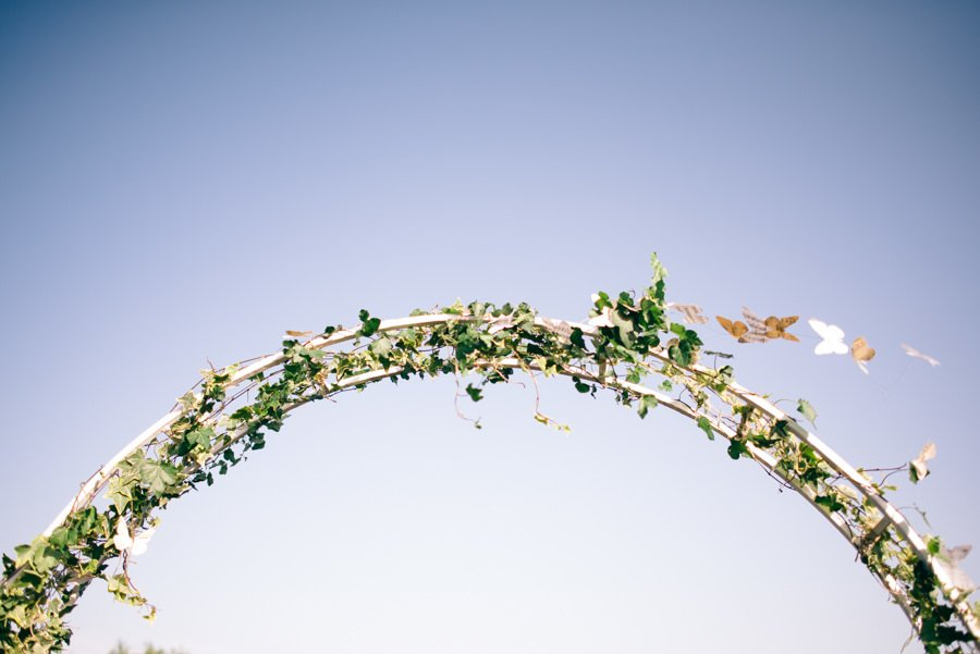 Arcada flori Nunta cu 900 de fluturi Miruna si Horatiu
