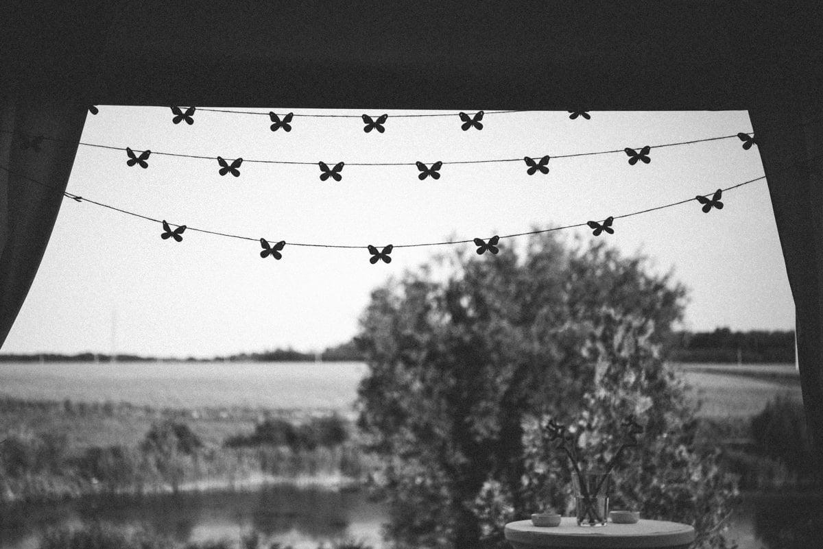 Fluturii Nunta cu 900 de fluturi Miruna si Horatiu