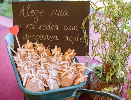 Nunta cu drumetii la munte –  Bogdana si Catalin