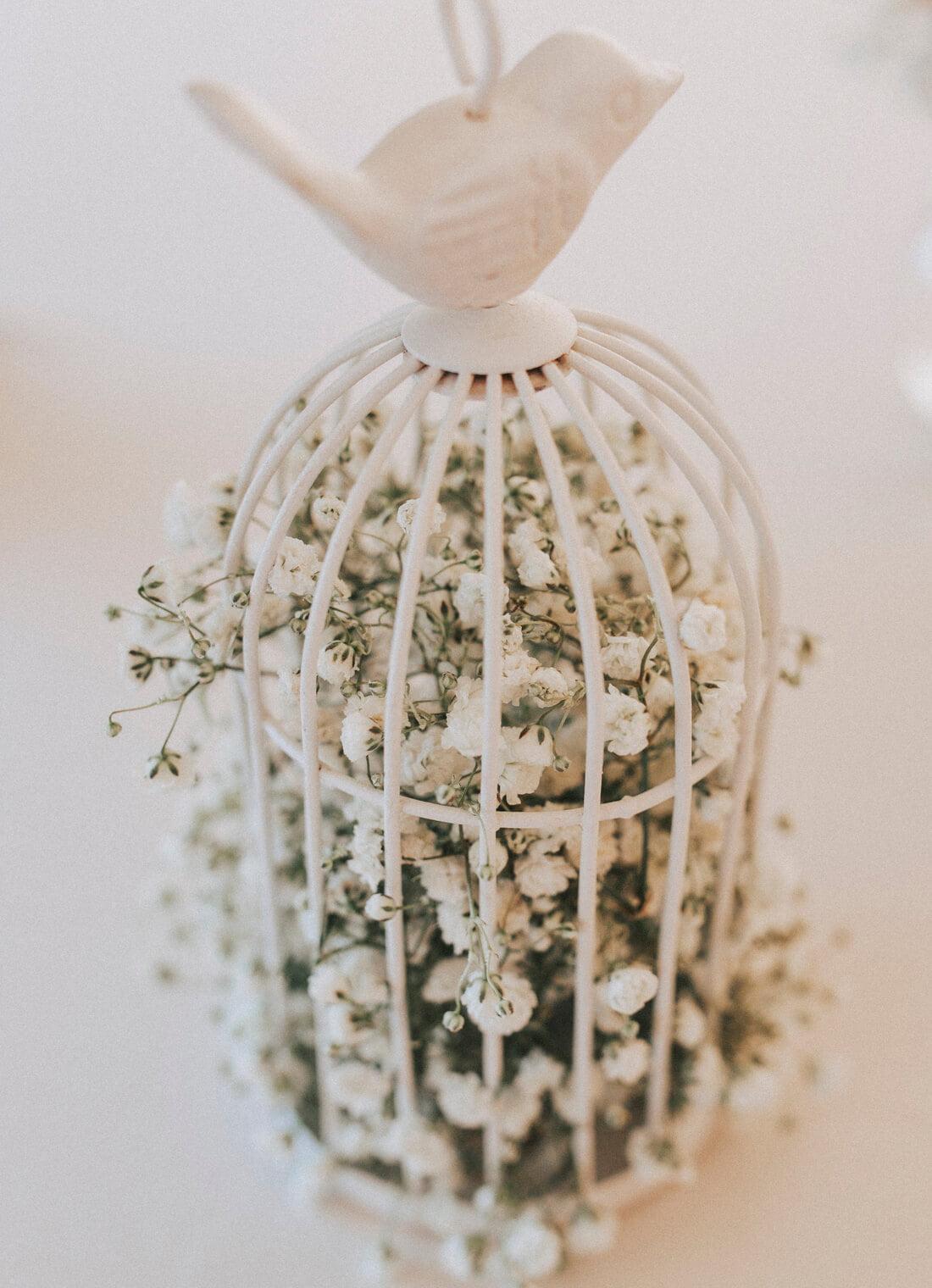 Nunta cu veselie – Rahela si Samuel (2)