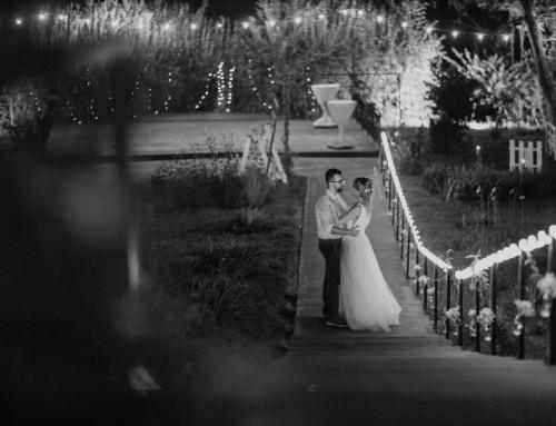 Nunta festival – Alexandra si Ionut