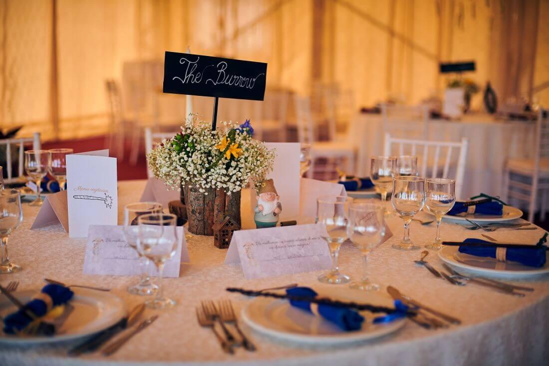 Nunta Harry Potter – Miruna si Mihai – IDO-Weddings-nuntiinaerliber (8)