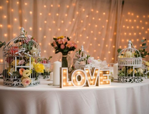 Nunta cu prieteni dragi – Oana si Dani