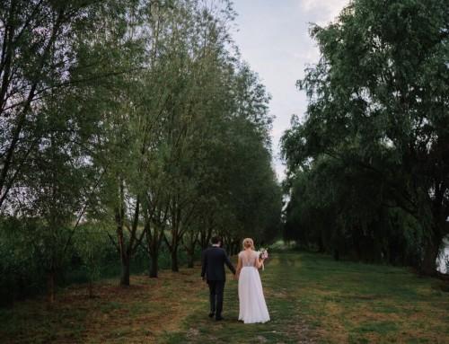 Nunta cu artificii, lavanda si muzica – Adelina si Ionut