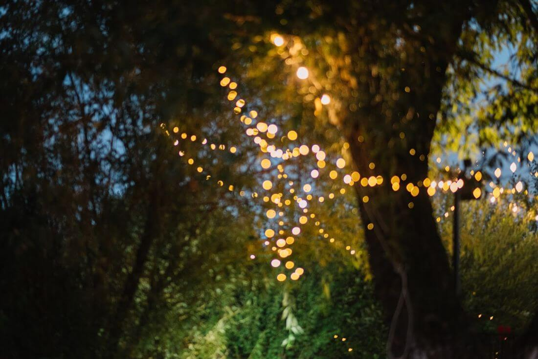 Nunta cu artificii, lavanda si muzica – Adelina si Ionut-IDO-Weddings-nuntiinaerliber (30)
