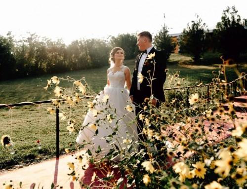 Nunta tomnatica cu dovleci – Mihaela si Andrei